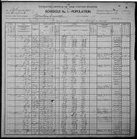 1900 Census - Hamilton, John Newton & Family