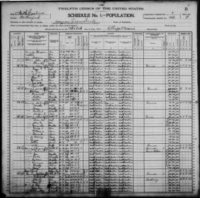 1900 Census - Multiple Nanney Families