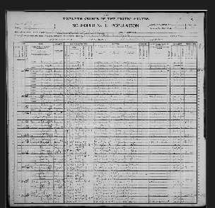 Oliver Perry McIntire (1853) - 1900 Census
