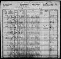 1900 Census - Nanney, Robert M. & Family