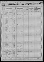 1860 Census - Multiple Nanney Families